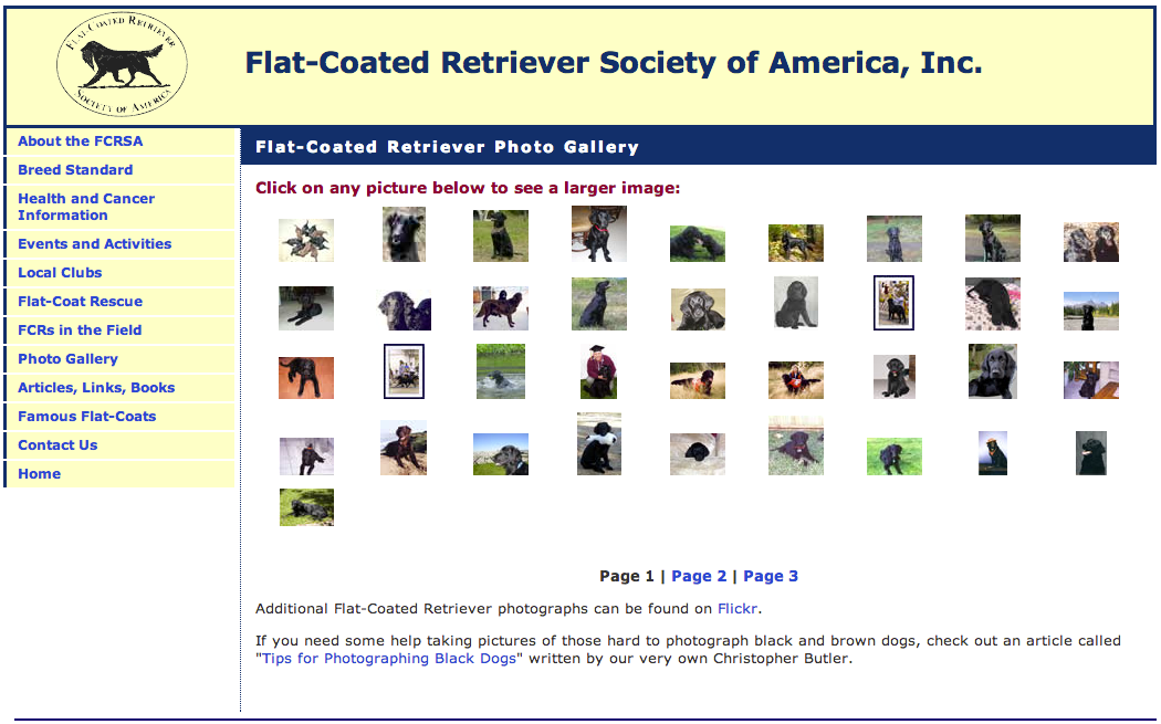 Flat-Coated Retriever Society of America